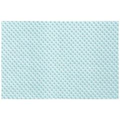 "Tissue Dental Blue  13"" X 18"""